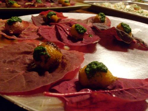 red-orach-turnip-nettle
