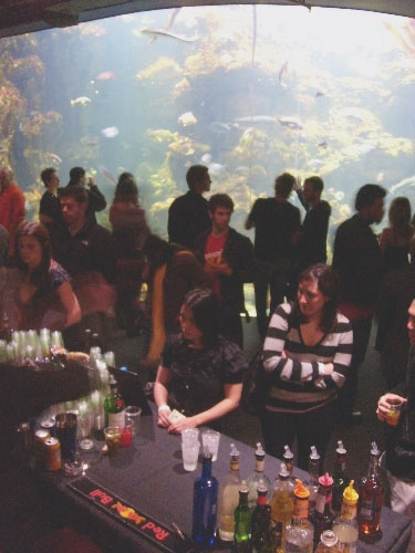 bar-and-aquarium