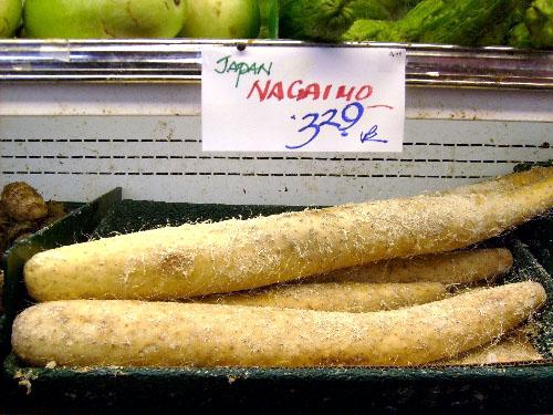 japanese-naigamo