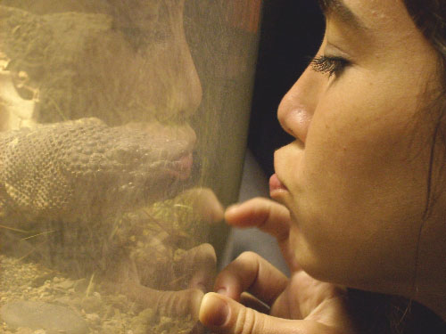 julie-and-beaded-lizard