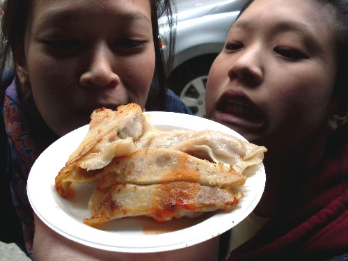 fried-dumplings
