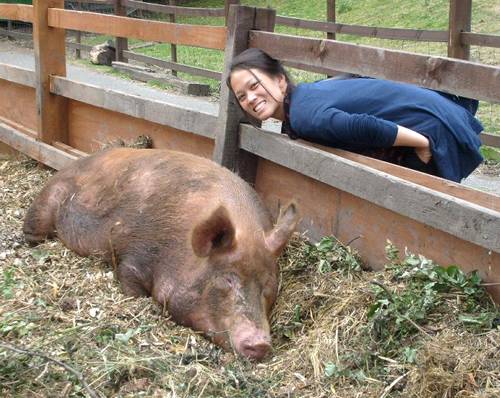 lexi and the pig