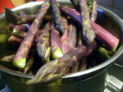 fresh purple asaparagus on the stove