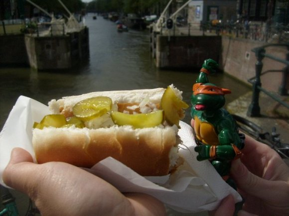 michaelangelo and the smoked herring sandwich